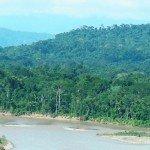 Paraguay is bekend om zijn prachtig en overgrote natuur