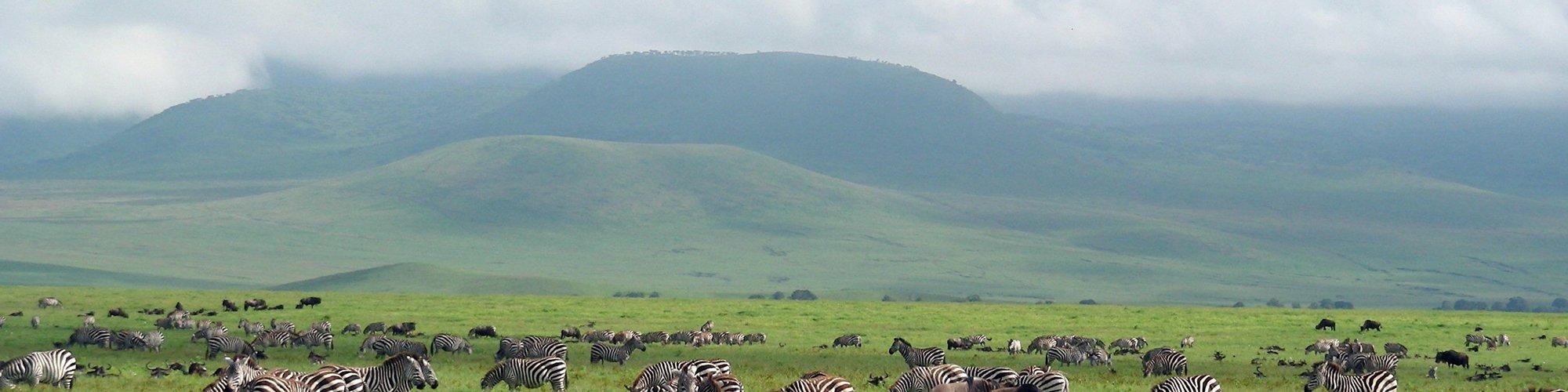 Tanzania is een land vol met natuur en cultuur reisplanner - Een hellend land ontwikkelen ...