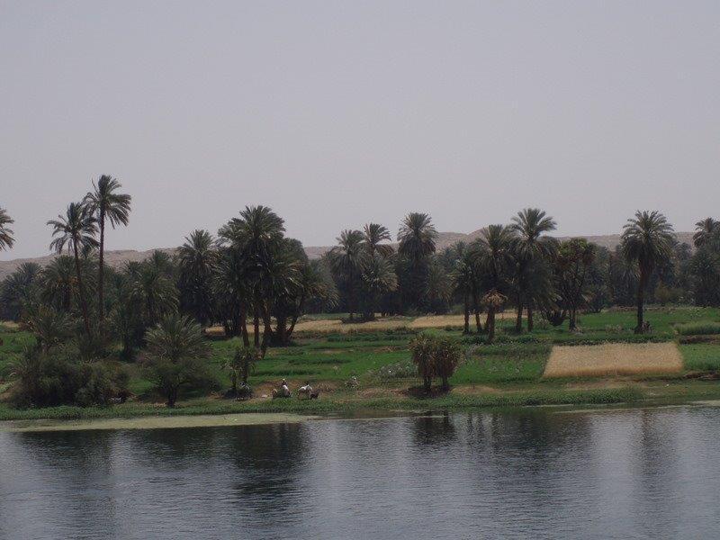 reis egypte 148